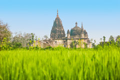 Temple ruins, Orchha Stock Photography
