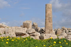 Temple ruins in Selinunte in Sicily Stock Photography