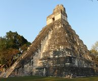 Temple ruins in Tikal National Park, Guatemala, at dawn. Royalty Free Stock Images