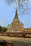 Temple Ruins, Ayutthaya Royalty Free Stock Photography