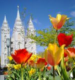 Temple Salt Lake City de LDS Photographie stock libre de droits