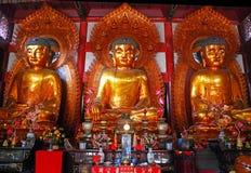 Temple of The Six Banyan Trees, Гуанчжоу, Китай Стоковое Изображение RF