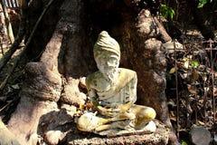 Temple slang. Hermit statue at Wat slang Stock Photography