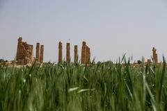 Temple Soudan de Soleb Photographie stock libre de droits