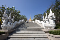 Temple Steps and Naga Royalty Free Stock Photos