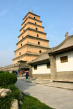 Temple and stupa. The temple is called the Big Jionji, The stupa is called the Big Wild Goose Pagoda,located in Xi'an, China, was built in the Tang Dynasty Royalty Free Stock Photos