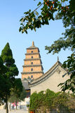 Temple and stupa. The temple is called the Big Jionji, The stupa is called the Big Wild Goose Pagoda,located in Xi'an, China, was built in the Tang Dynasty Royalty Free Stock Photography