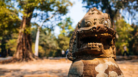 Temple Ta Prohm Royalty Free Stock Photo