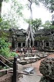 Temple of Ta-prom Cambodia. It was erected in honor of the mother of Emperor Jayavarman VII in the traditional Khmer style of Bayon Stock Photo