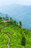 Temple on the tea mountain Royalty Free Stock Images