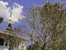 Temple Thai Stock Photography