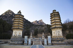 Temple towers Royalty Free Stock Images