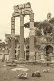 The Temple of Venus Genetrix in Forum Romanum. Rome, Italy. Vert. Monochromatic photo of the ruins of the Temple of Venus Genetrix in Forum Romanum. Rome, Italy royalty free stock image