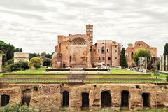 Temple of Venus in Rome Royalty Free Stock Photo