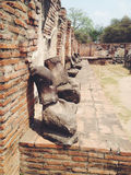 Temple  wat Mahathat in Ayutthaya historical park Royalty Free Stock Photos