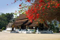 Temple Xieng Thong Royalty Free Stock Photos