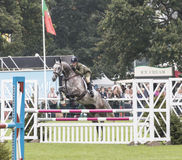 Templemartin flyg Royaltyfria Foton