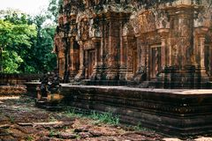 Temples Angkor Vat au Cambodge, merci Prohm, Siem Reap photos stock