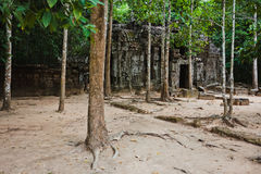 Temples of Angkor Wat, Cambodia Stock Photography