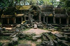 Temples Angkor Wat in Cambodia, ta Prohm, Siem Reap stock images