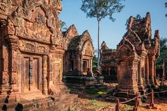 Temples Angkor Wat in Cambodia, ta Prohm, Siem Reap royalty free stock image