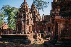 Temples Angkor Wat in Cambodia, ta Prohm, Siem Reap royalty free stock photo