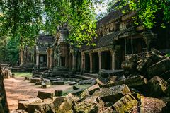 Temples Angkor Wat in Cambodia, ta Prohm, Siem Reap stock photography