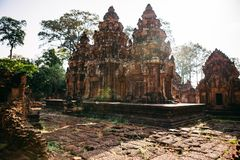 Temples Angkor Wat in Cambodia, ta Prohm, Siem Reap royalty free stock images