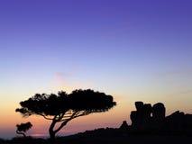Temples au coucher du soleil Image stock