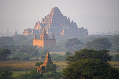 Temples of Bagan in early morning. Myanmar (Burma). Royalty Free Stock Photo