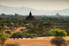 Temples in Bagan, Myanmar Royalty Free Stock Photography