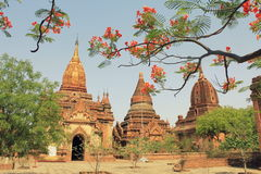 The temples of Bagan, Myanmar. Temples of Bagan with hills in the backgroud Royalty Free Stock Photography