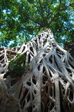 Temples Of Cambodia in the trees. Cambodia temples on a stunning bluebird day Stock Photo