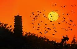 Temples chinois et quelques oiseaux Photographie stock