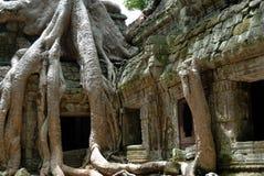 Temples d'Angkor, Cambodge photos libres de droits