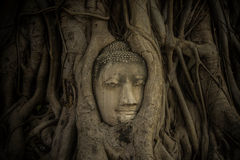 Temples d'histoire Photographie stock libre de droits