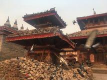 Temples et colombes endommagés de Bouddha Photos stock
