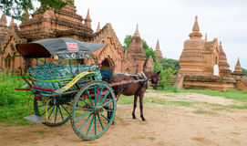 The temples and the horse carriage in Bagan Stock Photo