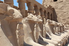 Temples of Karnak, Luxor Royalty Free Stock Image