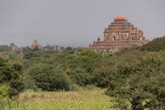 Temples and pagodas of Bagan. Panoramic View of the archaeological park of the ancient temples and pagodas of Bagan. Myanmar royalty free stock photo