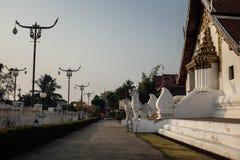 Templet Fotografering för Bildbyråer
