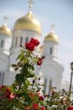 Templet av omgestaltning av Jesus Serafimo-Diveyevsky Monastery Royaltyfri Fotografi