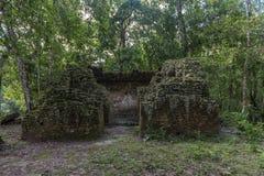 Templet i Tikal parkerar Sightobjekt i Guatemala med Mayan tempel och ceremoniel fördärvar Tikal är en forntida Mayan citadell I arkivfoto