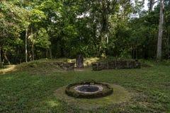 Templet i Tikal parkerar Sightobjekt i Guatemala med Mayan tempel och ceremoniel fördärvar Tikal är en forntida Mayan citadell I arkivfoton