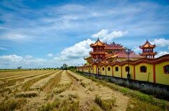 Templo al lado del campo de arroz cosechado, Sekinchan, Malasia Fotos de archivo libres de regalías
