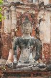 Templo antigo de Ayutthaya Fotografia de Stock Royalty Free