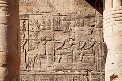 Templo antigo egípcio Philae de Aswan do hyeroglyphics foto de stock
