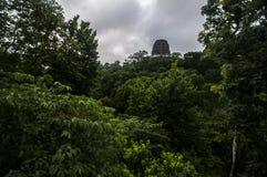 Templo arruinado sobre a selva Fotografia de Stock Royalty Free