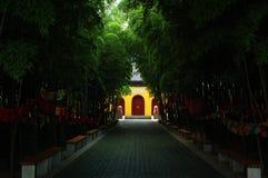 templo atrás das árvores Foto de Stock Royalty Free