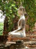 Templo - Ayutthaya (Buda) Fotografia de Stock
